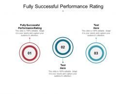 Fully Successful Performance Rating Ppt Powerpoint Presentation Icon Graphic Tips Cpb