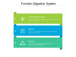 Function Digestive System Ppt Powerpoint Presentation Summary Visual Aids Cpb