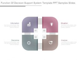 Function Of Decision Support System Template Ppt Samples Slides