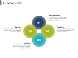 Function Point Ppt Powerpoint Presentation Infographic Template Visuals Cpb
