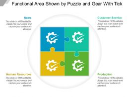 Functional Area Shown By Puzzle And Gear With Tick