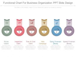 Functional Chart For Business Organization Ppt Slide Design