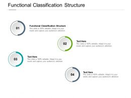 Functional Classification Structure Ppt Powerpoint Presentation Visuals Cpb
