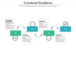 Functional Excellence Ppt Powerpoint Presentation Infographic Template Icon Cpb