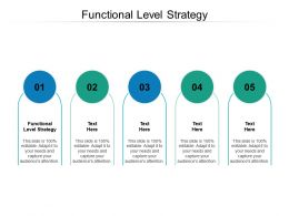 Functional Level Strategy Ppt Powerpoint Presentation Portfolio Graphics Cpb