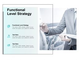 Functional Level Strategy Ppt Powerpoint Presentation Slides Icons Cpb