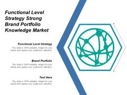 Functional Level Strategy Strong Brand Portfolio Knowledge Market