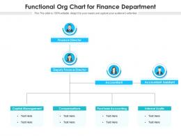 Functional Org Chart For Finance Department