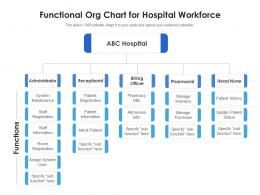 Functional Org Chart For Hospital Workforce