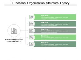 Functional Organisation Structure Theory Ppt Powerpoint Presentation Gallery Smartart Cpb