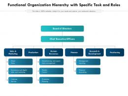 Functional Organization Hierarchy With Specific Task And Roles