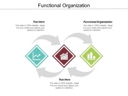 Functional Organization Ppt Powerpoint Presentation Infographic Template Graphics Pictures Cpb