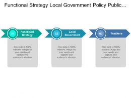Functional Strategy Local Government Policy Public Sector Policy