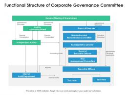 Functional Structure Of Corporate Governance Committee
