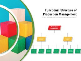 Functional Structure Of Production Management