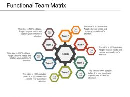 Functional Team Matrix