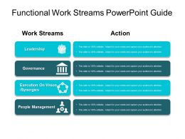 Functional Work Streams Powerpoint Guide