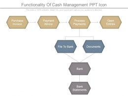 Functionality Of Cash Management Ppt Icon