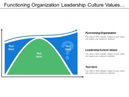 Functioning Organization Leadership Culture Values Cost Budget Management