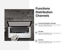 Functions Distribution Channels Ppt Powerpoint Presentation Infographic Template Graphics Cpb