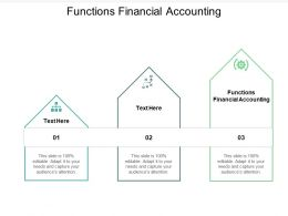 Functions Financial Accounting Ppt Powerpoint Presentation Portfolio Master Slide Cpb