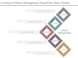 Functions Of Brand Management Powerpoint Slide Themes