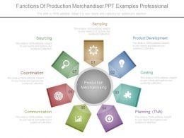 Functions Of Production Merchandiser Ppt Examples Professional