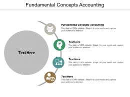 Fundamental Concepts Accounting Ppt Powerpoint Presentation Portfolio Professional Cpb