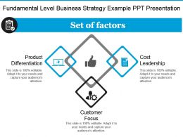 Fundamental Level Business Strategy Example Ppt Presentation