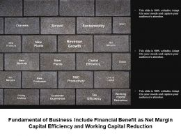 Fundamental Of Business Include Financial Benefit As Net Margin Capital Efficiency And Working Capital Reduction