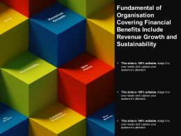 Fundamental Of Organisation Covering Financial Benefits Include Revenue Growth And Sustainability