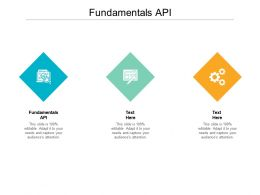 Fundamentals API Ppt Powerpoint Presentation Summary Outline Cpb