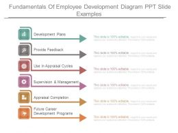 Fundamentals Of Employee Development Diagram Ppt Slide Examples