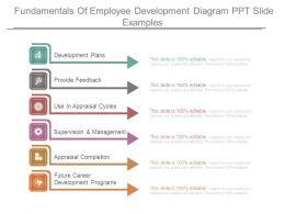 fundamentals_of_employee_development_diagram_ppt_slide_examples_Slide01