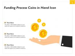 Funding Process Coins In Hand Icon
