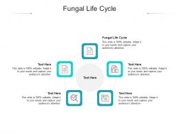 Fungal Life Cycle Ppt Powerpoint Presentation Summary Slideshow Cpb