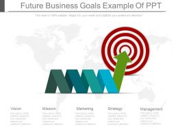 Future Business Goals Example Of Ppt