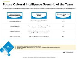 Future Cultural Intelligence Scenario Of The Team Skill Level Has Ppt Powerpoint Presentation Gallery Slides