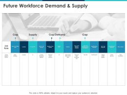 Future Workforce Demand And Supply Job Role Ppt Powerpoint Presentation File Aids
