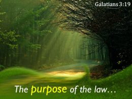 Galatians 3 19 The purpose of the law PowerPoint Church Sermon