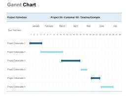 Gannt Chart Management Ppt Powerpoint Presentation Ideas Show