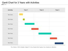 Gantt Chart For 3 Years With Activities