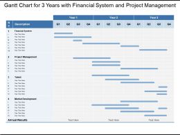 Gantt Chart For 3 Years With Financial System And Project Management