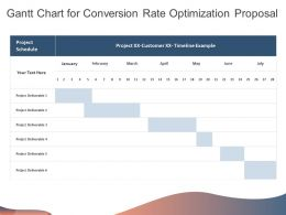Gantt Chart For Conversion Rate Optimization Proposal Ppt Powerpoint Presentation Infographics
