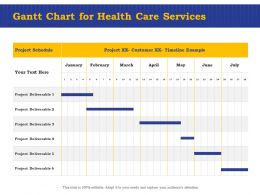 Gantt Chart For Health Care Services Ppt Powerpoint Presentation Visuals