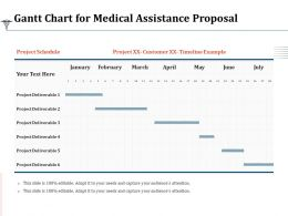 Gantt Chart For Medical Assistance Proposal Ppt Powerpoint Presentation Ideas Themes