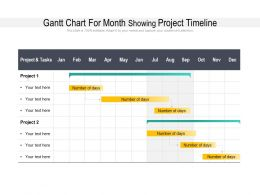 Gantt Chart For Month Showing Project Timeline
