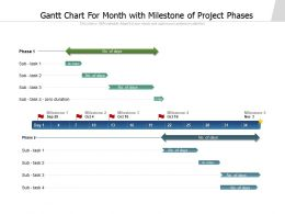 Gantt Chart For Month With Milestone Of Project Phases