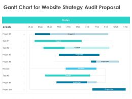 Gantt Chart For Website Strategy Audit Proposal Ppt Powerpoint Presentation Styles Influencers