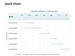 Gantt Chart Table Ppt Powerpoint Presentation Model Graphics Example